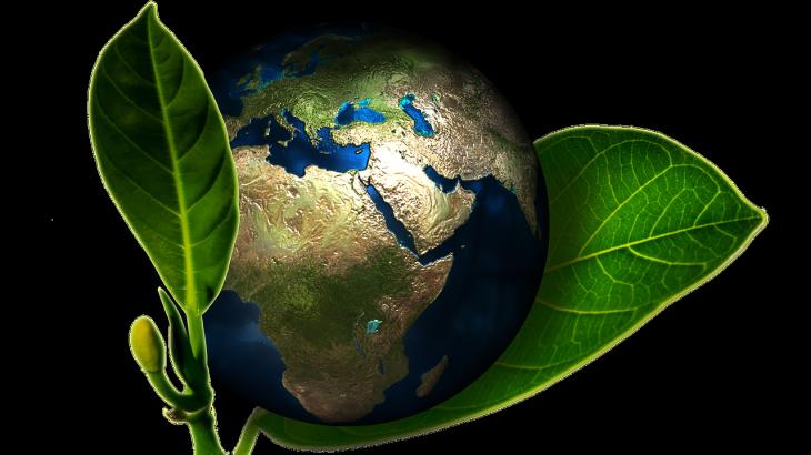 Sklep ekologiczny i fabryka łączników